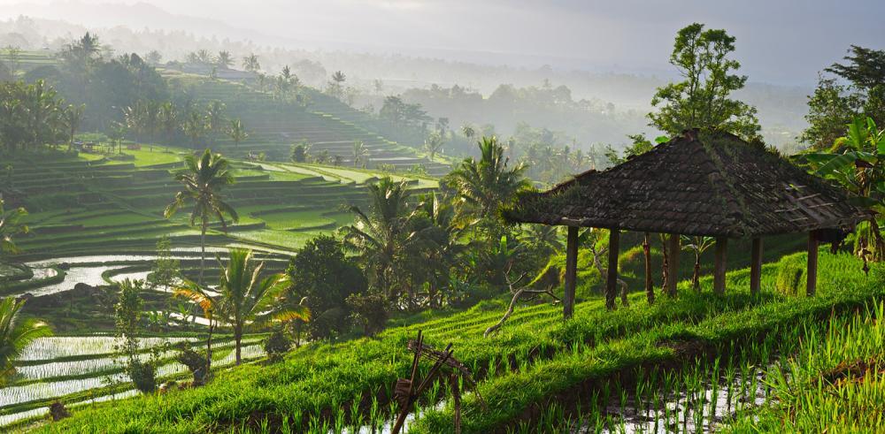 Bali champêtre et temple de Besakih