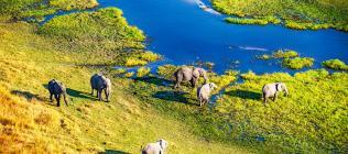 Le Botswana Authentique