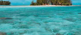 Pension Bora Bora Ecolodge