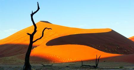 Le Namib