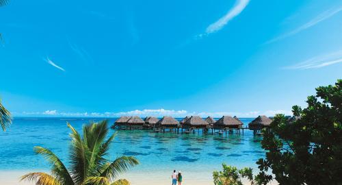 Hilton Moorea Lagoon Resort : Activités / Loisirs
