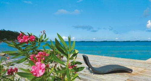 Pension Bora Bora Ecolodge : Activités / Loisirs