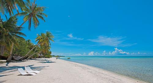 Le Sauvage Private Island : Activités / Loisirs