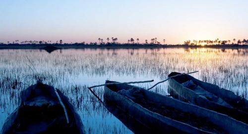 Botswana : Le Delta de l'Okavango