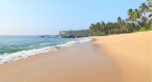 Anantara Peace Haven Tangalle Resort : Activités / Loisirs