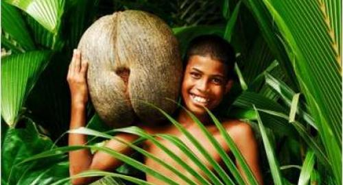 Praslin : La nature préservée