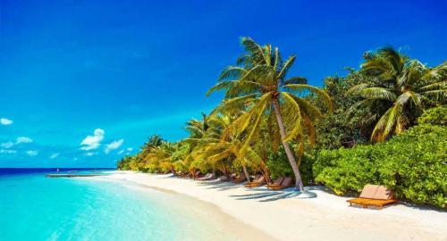 Lily Beach Resort & Spa : Activités / Loisirs