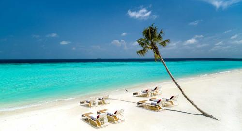 LUX* North Malé Atoll Resort & Villas : Activités / Loisirs