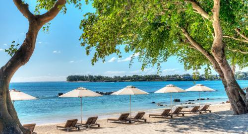 The Westin Turtle Bay Resort & Spa : Activités / Loisirs