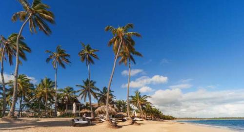 Zoëtry Agua Punta Cana : Activités / Loisirs