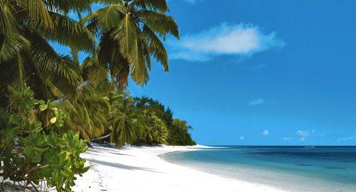Four Seasons Resort at Desroches Island : Activités / Loisirs