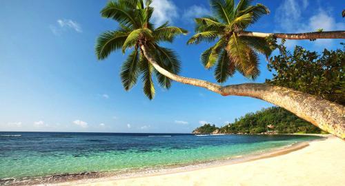 Kempinski Seychelles Resort Baie Lazare : Activités / Loisirs