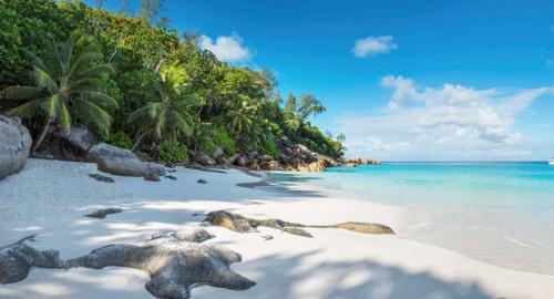 Constance Lemuria Seychelles : Activités / Loisirs